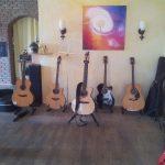 Workshop Gesang und Gitarre mit Barth | Roemer